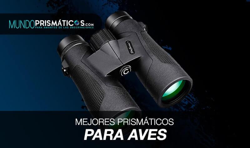 mejores prismáticos para aves